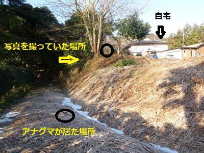 14maa6.jpg