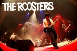 n_140713_roosters_hp.jpg