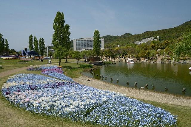花の中海1