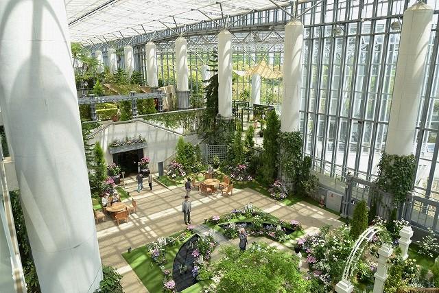 奇跡の星の植物館2