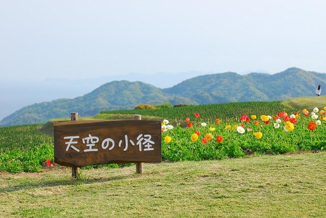 あわじ花さじき7-2