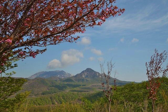 鬼女台から見る大山・烏ヶ山7