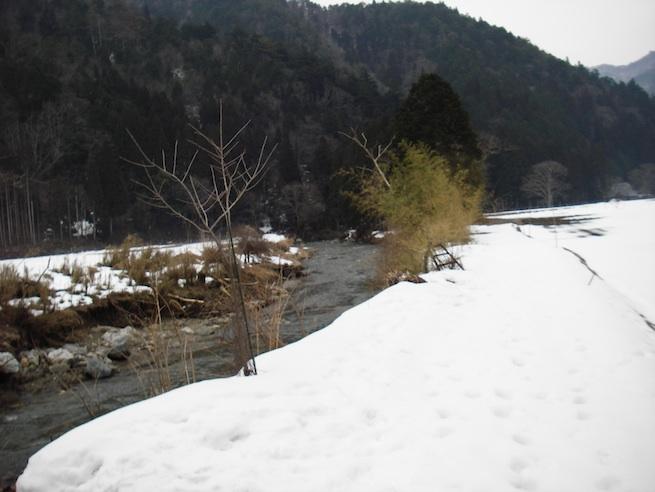 kutagawa.jpg