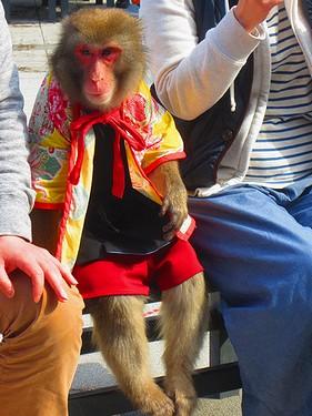 20140405昭和記念公園 (7)