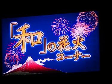 20140816 神宮花火 (12)