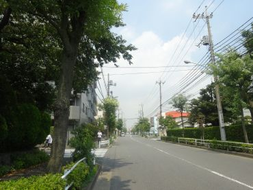 mini_DSC09476.jpg