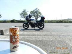庭田山の桜 015
