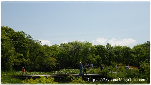 F20140524湿性花園12