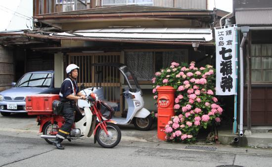 鎌倉撮影会 6/11/2014