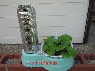 IMG_4206給水器