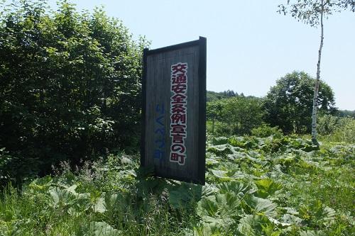 kawakami12.jpg