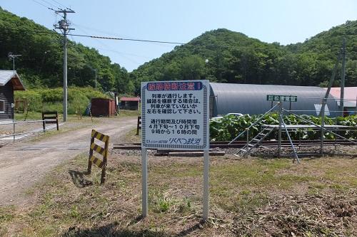 kawakami18.jpg
