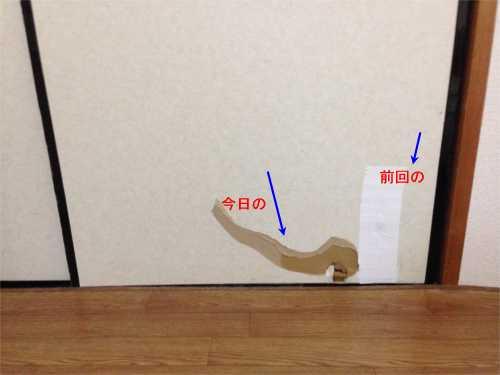 IMGA0601.jpg