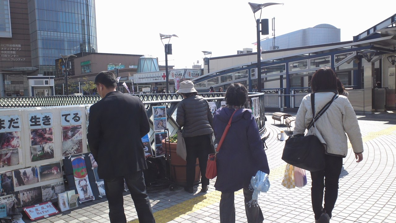 ar1403kawaguchi3.jpg