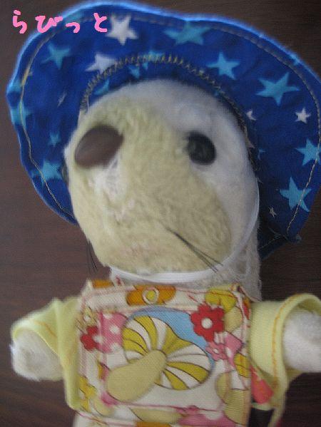 ラッコ星柄帽子