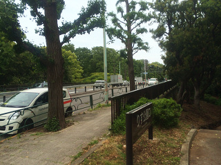 薄曇の駒沢公園付近2 by占いとか魔術とか所蔵画像