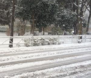 あり得ない大雪 BY占いとか魔術とか所蔵画像