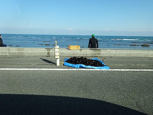 0222海5
