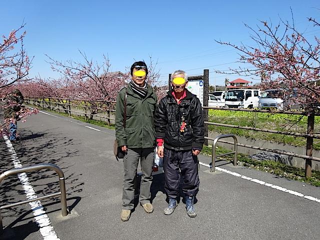 0308河津桜8