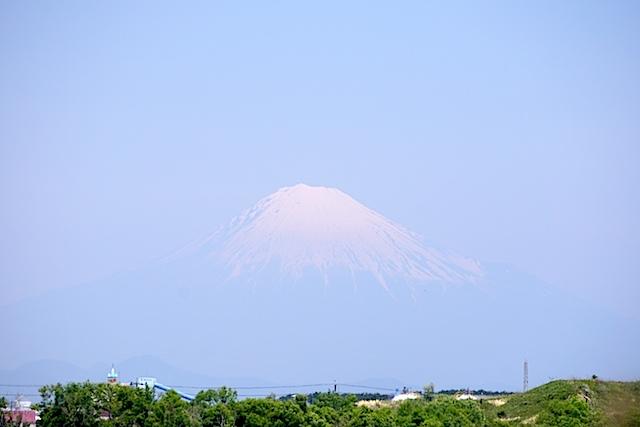 0511吉田公園2