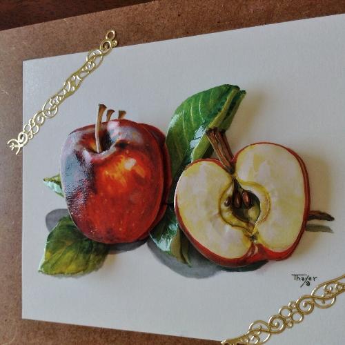 りんご201451 (500x500)