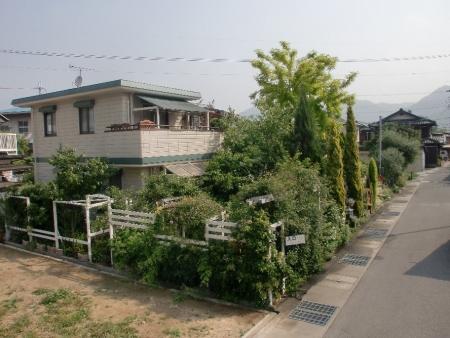 2014-05-31_02.jpg
