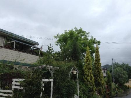 2014-08-10_53.jpg