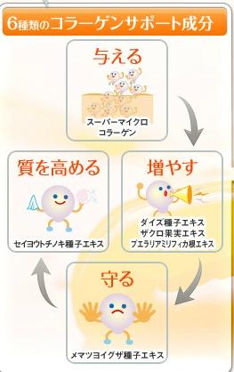 コラーゲンサポート成分6種