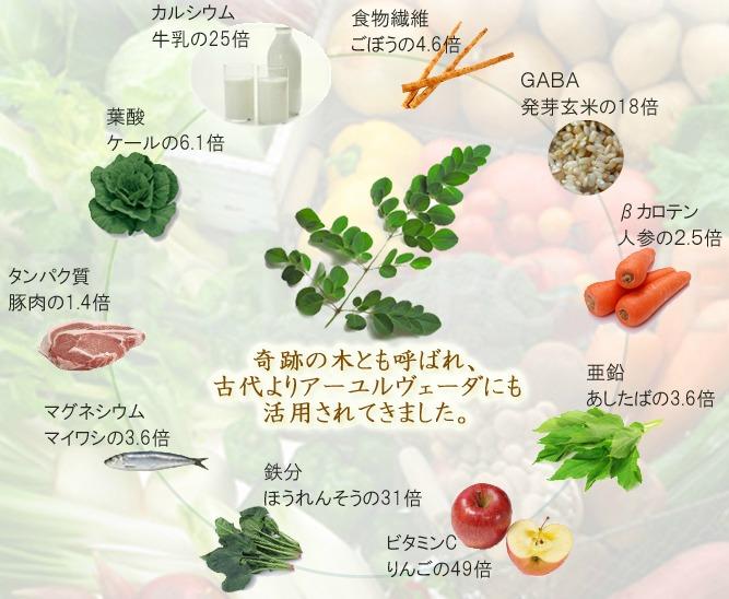 モリンガ 90種類以上の栄養素
