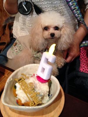 きららチャン/Birthday Girlちゃん♪♪