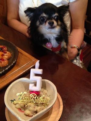 優くん/Birthday Boyくん♪♪