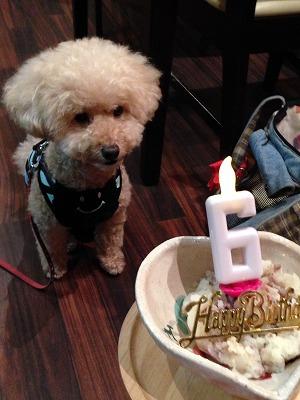 小太朗くん/Birthday Boyくん♪♪