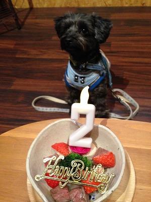 ぴのクン/Birthday Boyくん♪♪