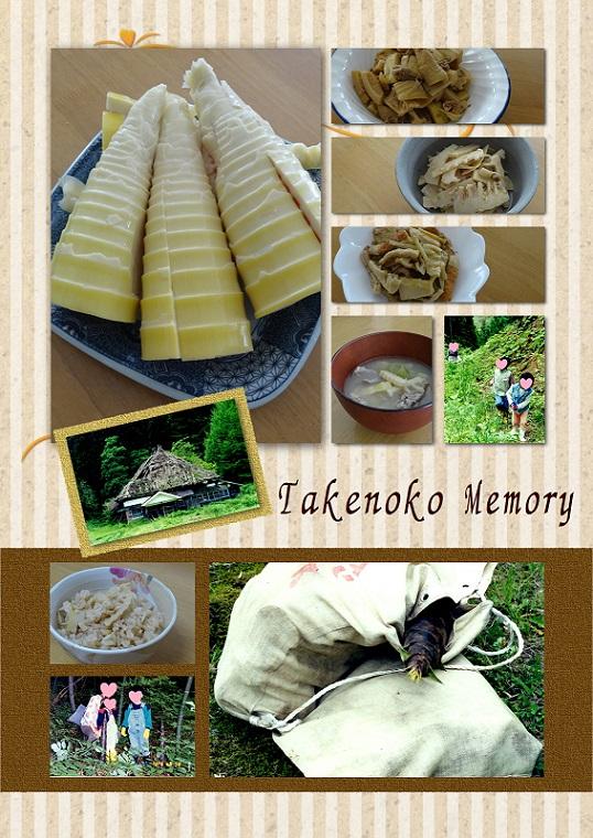 タケノコ メモリー 50 95