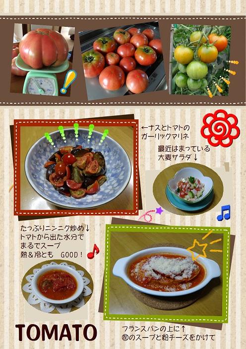 tomato 50