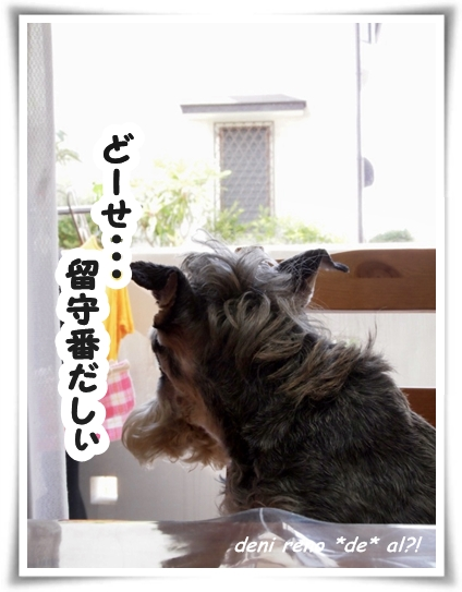 0602_1c.jpg