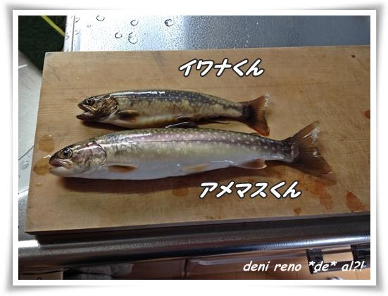 aomori_22.jpg