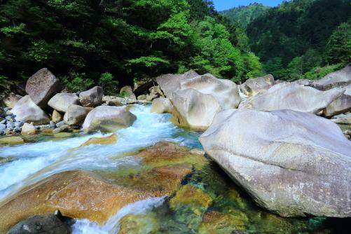 新緑の阿寺渓谷