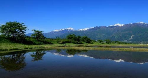 水田地帯に映える中央アルプスの山並みと残月