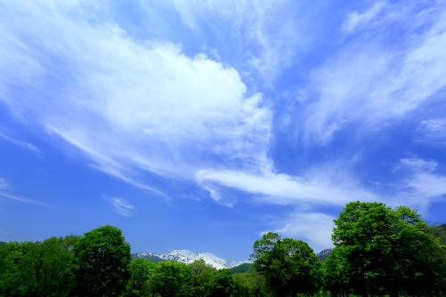 雪深い越後の山を彩る雲と若葉