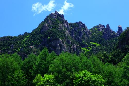 岩峰を彩る若葉