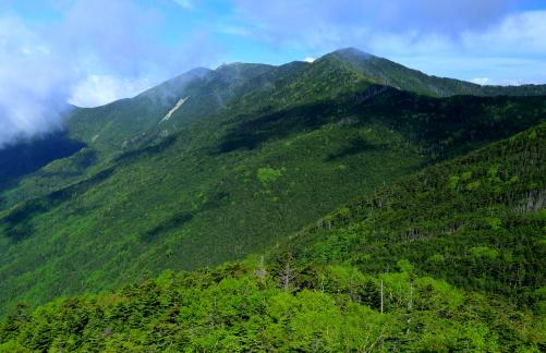 夢の庭園から望む朝日岳と奥秩父第二の高峰・金峰山