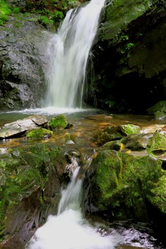 苔むす渓流に乙女滝