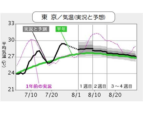 東京/気温