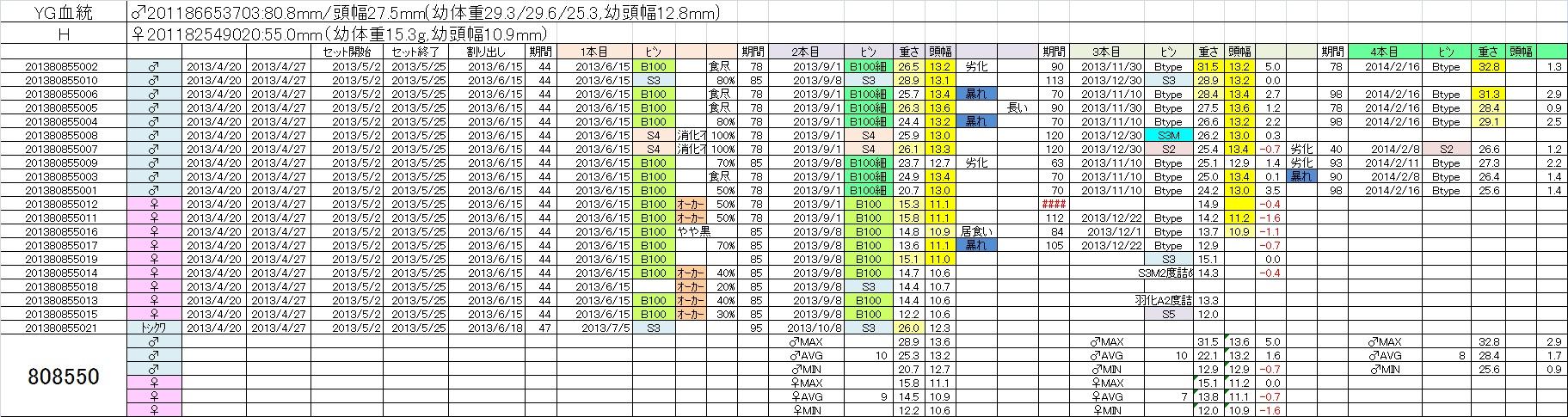 2013808550 4本目
