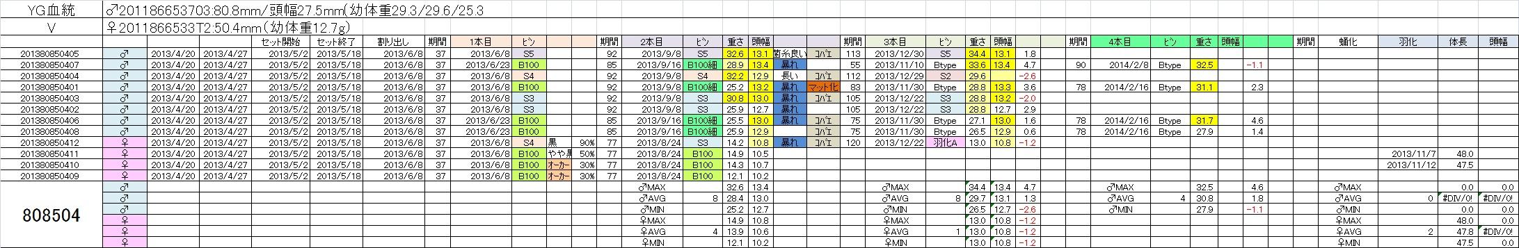2013808504 4本目