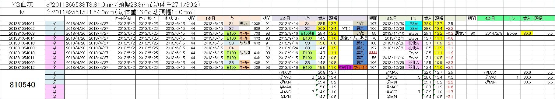 2013810540 4本目