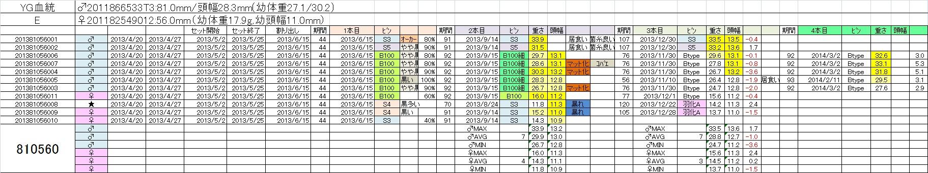 2013810560 4本目