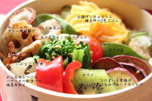 お揚げときゅうりと錦糸卵の3色ごはん4
