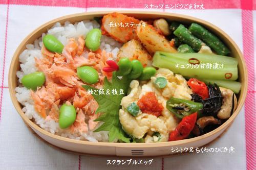 曲げわっぱ鮭弁2